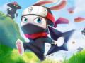 Giochi Ninja Rabbit